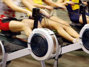 11353624 - girls exercising in the gym on rowing machines